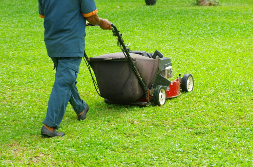Love for Landscaping - Lawn Care 1