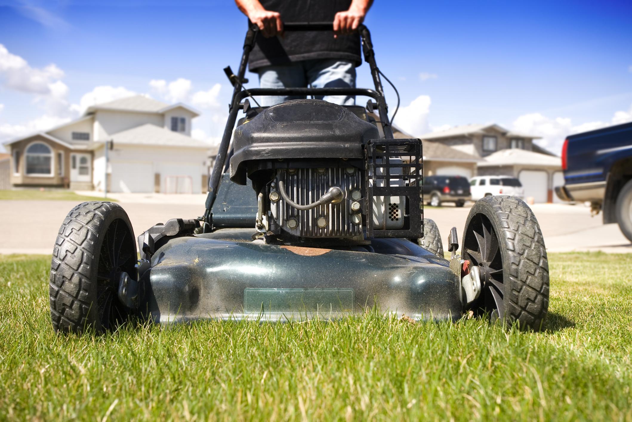 Chandler AZ Lawn Care Services