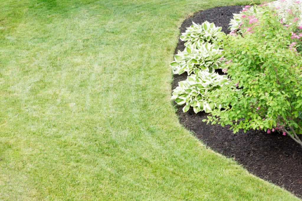 Love for Landscaping - Lawn Maintenance 2