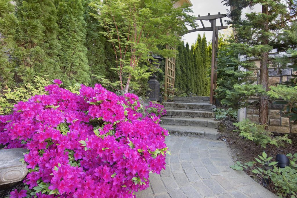 Love for Landscaping - Services